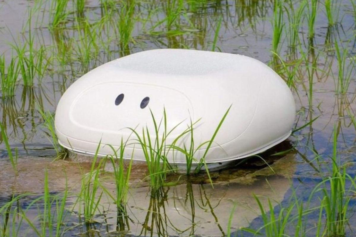 Nissan'dan pirinç tarlaları için ördek robotu